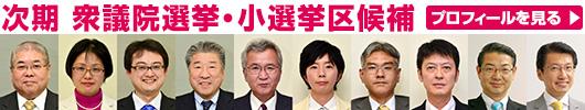 衆議院議員 小選挙区候補紹介