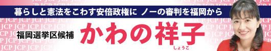 2019参院選 かわの祥子