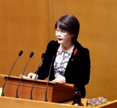 「有明海問題の真の解決を」福岡県議会12月議会で論戦